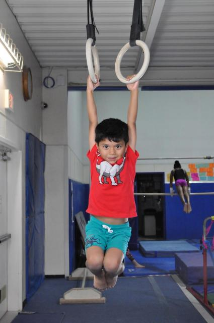 Boy hangs on the gymnastics rings